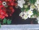 Fioriera in pietra di Luserna - Anteprima immagine 2