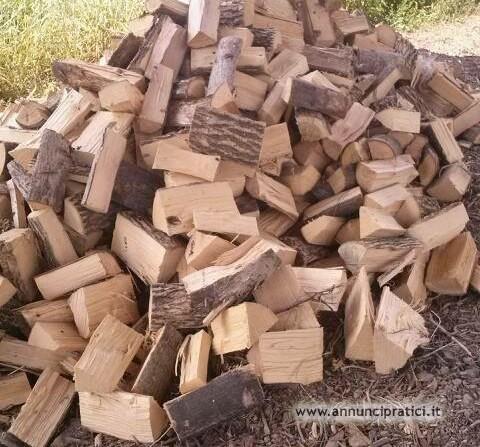 legna  verde per il prossimo anno