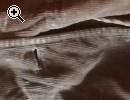 Zanchetta sarda - Anteprima immagine 1