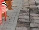 Vendita appartamento i Bussi sul Tirino - Anteprima immagine 3