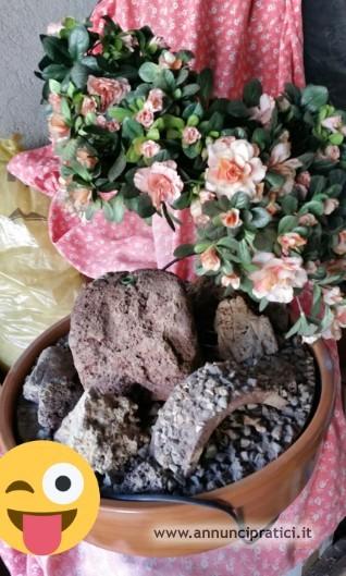 Bellissima fioriera
